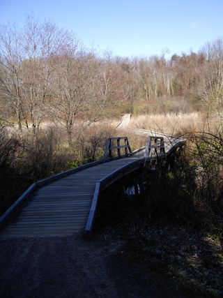 Wooden_Bridge